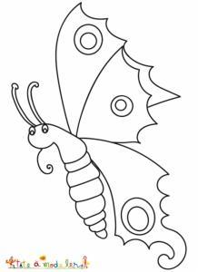 Beau papillon de profil à colorier