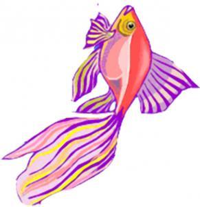 poisson d'avril rouge, violet et jaune