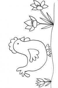 coloriage d'une poule aux crocus
