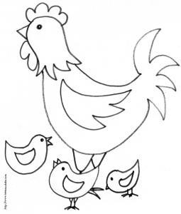 la poule entourée des poussins