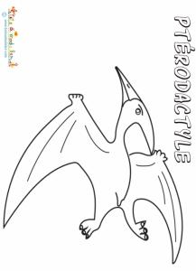 Pterodactyle, coloriage pterodactyle