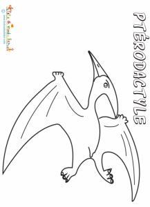 Pterodactyle, coloriage pterodactyle