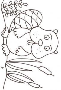 coloriage du raton dans les roseaux
