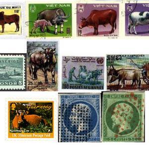 Les timbres pour le bricolage - junior