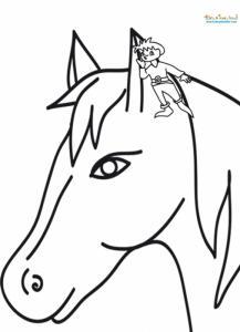 Tom Pouce et le cheval