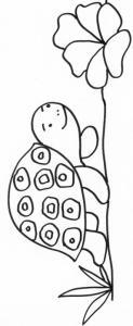 coloriage d'une tortue et sa salade