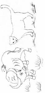 """Imprimer la page 2 du conte """"Le tigre et le paysan"""""""