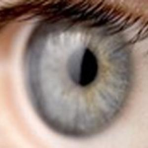 Iris de l'oeil