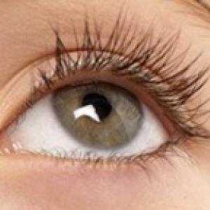 La cornée de l'oeil