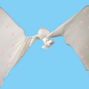 Fabriquer des ailes de fée pour se déguiser