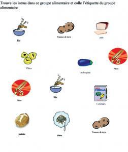 Activité pour identifier les céréales