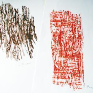 Relever des empreintes de troncs d'arbres pour les observer