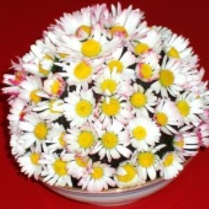 Bouquet de pâquerettes en forme de grosse boule