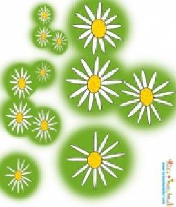 Modèles de fleurs pour cadre champêtre