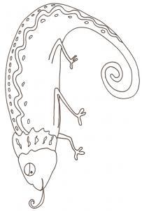 Coloriage d'un caméléon 2