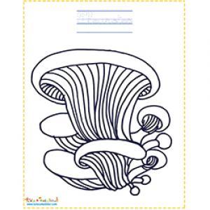 Pleurotes à colorier