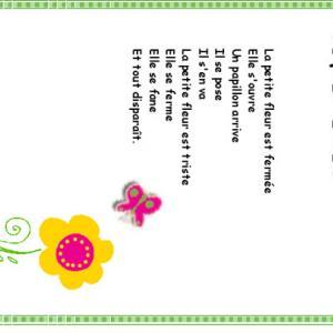La petite fleur est fermée