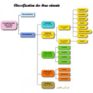 Tableau de synthèse présentant la classification animale