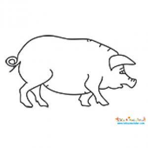 Dessin de cochon à colorier