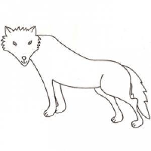 Coloriage de loup