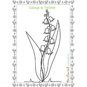 Dessin d'une fleur de printemps à colorier : les fleurs à clochettes couvrent rapidement les sous-bois au printemps ! Un coloriage pour découvrir les fleurs du printemps.