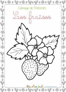 Coloriage De Printemps Primaire.Coloriages De Printemps