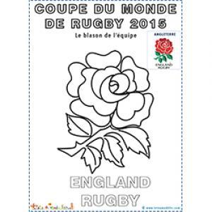 La rose symbole et blason de l'équipe d'Angleterre