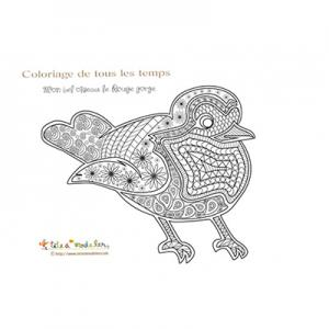 Coloriage : mon bel oiseau le rouge gorge