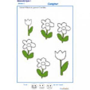 exercice n°3 : colorier le bon nombre de fleurs MS