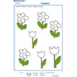 Exercice 4 pour compter les fleurs