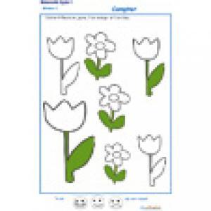 Colorier les fleurs en suivant la consigne MS