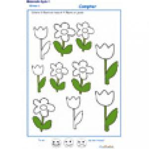 colorier le bon nombre de fleurs MS