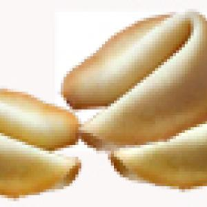 Fortune cookies messages d'amour pour la fête des mères