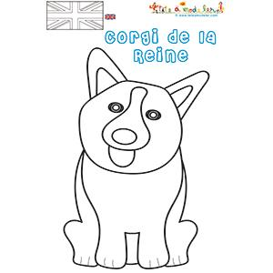 Coloriage de Corgi, le chien de la reine Élisabeth II