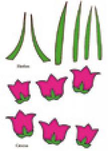Imprimer les crocus pour la décoration du mini panier