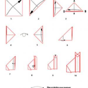 Croquis origami du chat