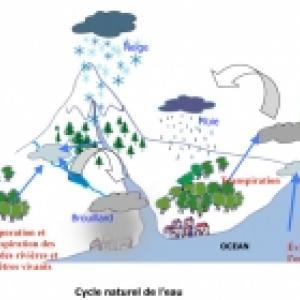 Imprimer le cycle  naturel de l'eau