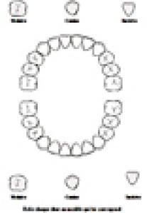 Activité pour apprendre à reconnaître les dents