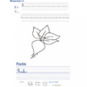 Imprimer la page d'écriture sur le radis