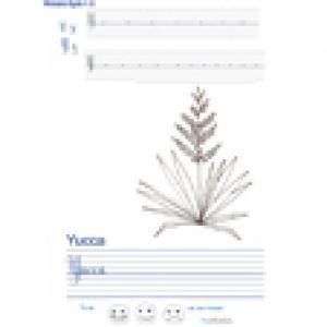 Imprimer la page d'écriture sur le yucca