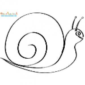 Gros escargot pour faire une mosaïque