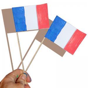 Fanion de la France
