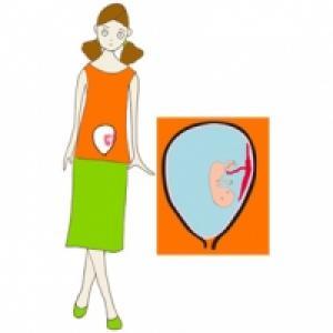 Taille de bébé à 3 mois de grossesse