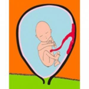 A 5 mois de grossesse, bébé bouge beaucoup !