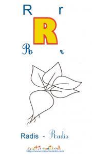 Apprendre le R et colorier le radis