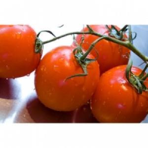 La tomate est-elle un fruit ou un légume ?