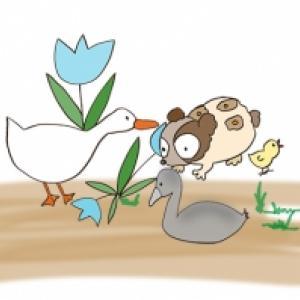 Le vilain petit canard est martyrisé
