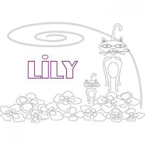 prénom lily