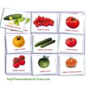 Loto des tomates et des concombres