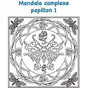 Mandala grand papillon complexe